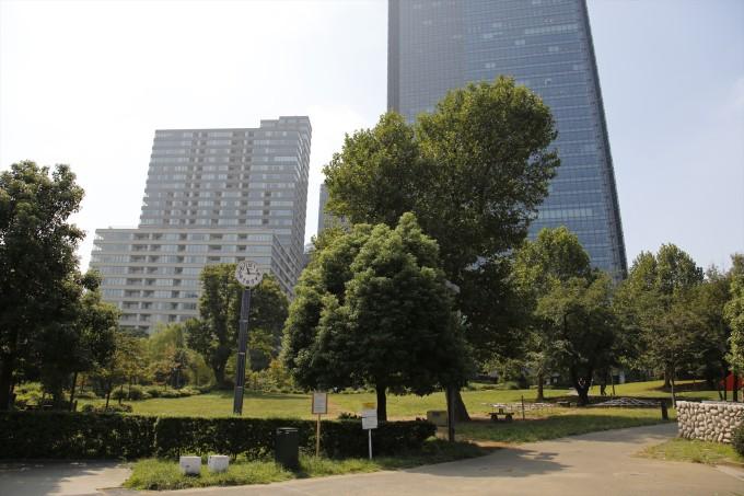 2:高級マンションや高級ホテルの谷間にある閑静な公園