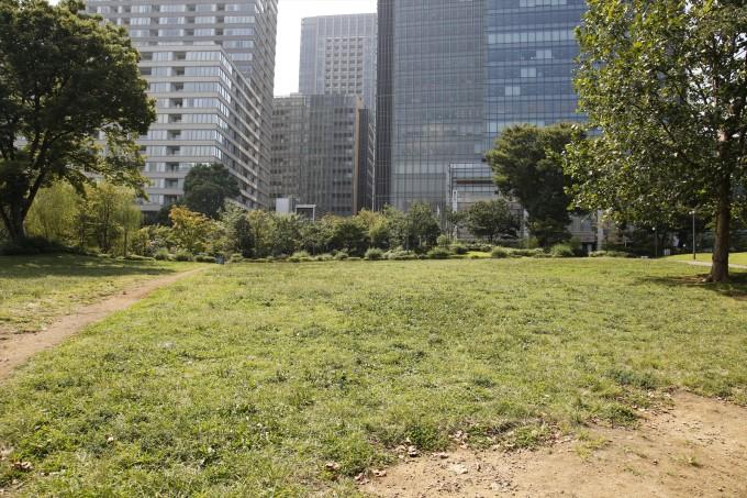 全裸で前転していた公園の中心にある芝生の広場